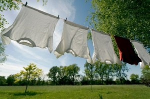 Wassen met wasnoot voordelig, zonder toevoegingen.